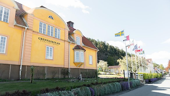 Yellow building with flags in front